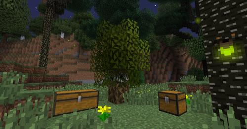 miners tree sapling