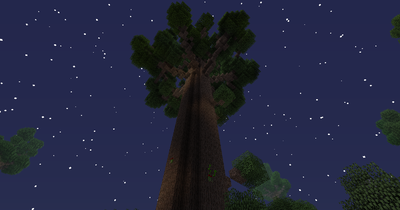 Twilght Forest Robust Twilght Oak.png